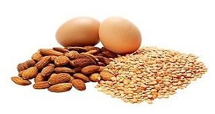 Protein-zist-[www.riazi100.ir]