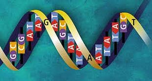genetik-[www.riazi100.ir]