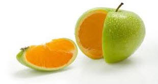 orange-apple-riazi100